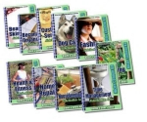 Product picture NEW* 10 Ready Made Niche Booklets  With MRR